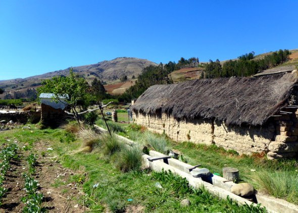 adobe home, thatch roof, adjacent plot and irrigation canal